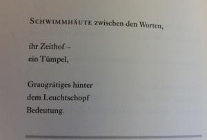 Schwimmhäute_deutsch